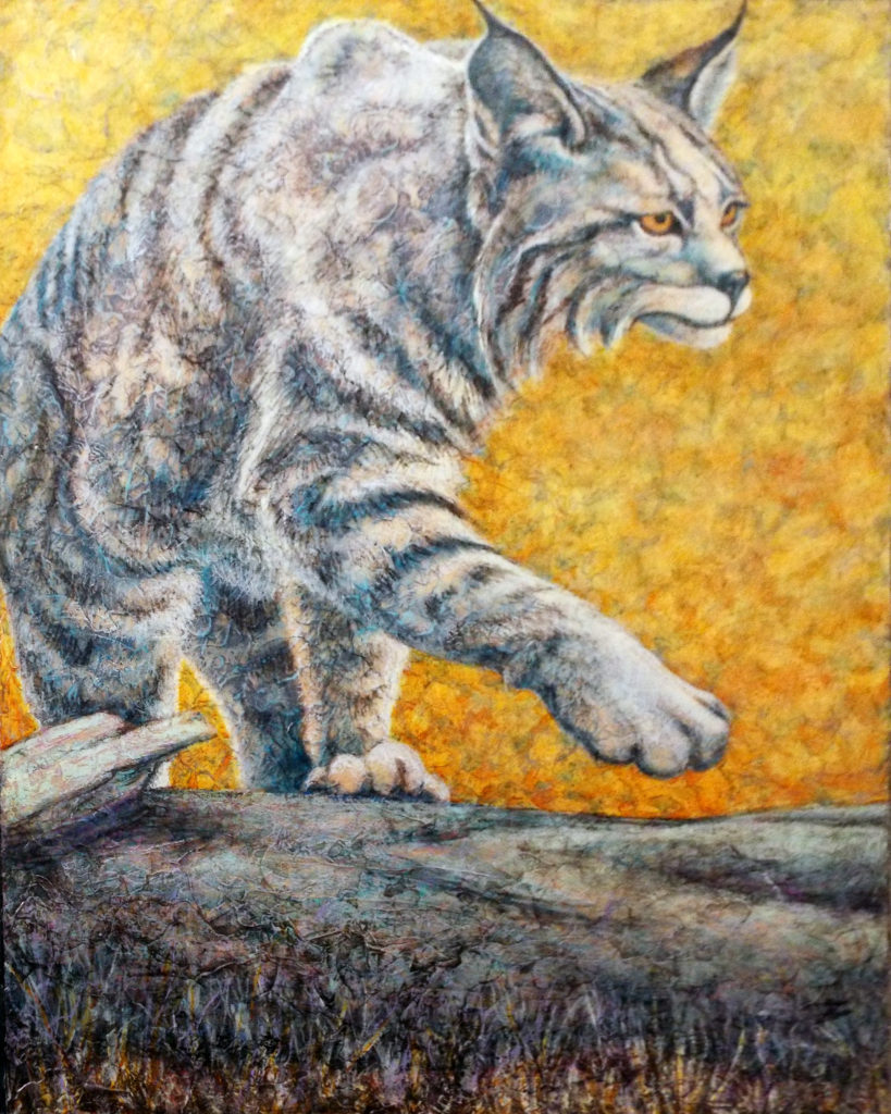 Bob Cat, Acrylic by Robyn Ryan - Size 30in x 24in (October 2016)