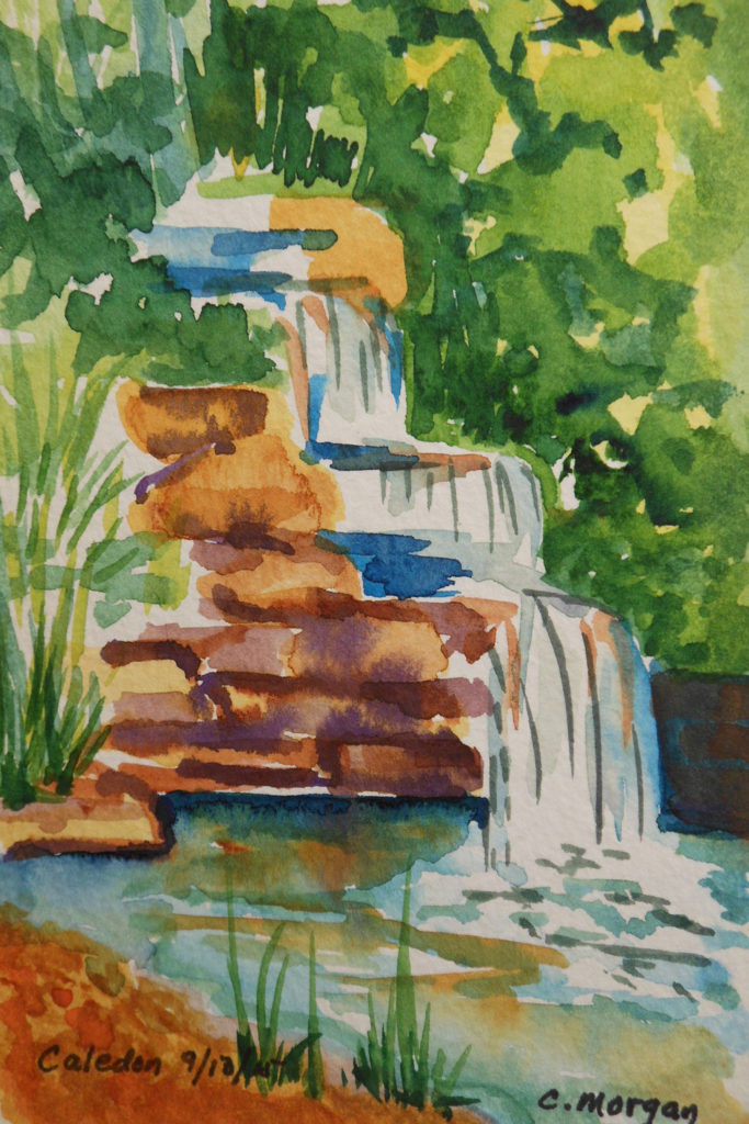 Caledon Water Garden #1, Watercolor by Carrol Morgan - Size 6in x 4in (October 2016)