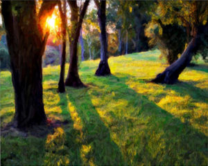 Long Shadows, Photography by David Kennedy - Size 16in x 20in (April 2017)