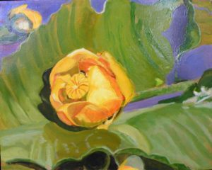 Waterlily IV, Oil by Charlotte Richards (February 2012)