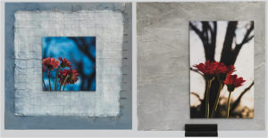 Color Temps are Changing, Mixed Media Collage and Photography on Metal by Rebecca W. Carpenter, Size 24in x 24in -2 sides (July 2017)