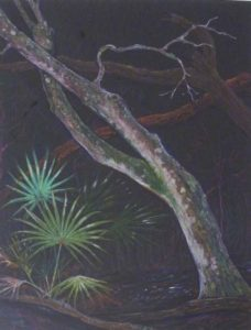 Deep in a Forest, Colored Pencils by John Romaine (September 2012)
