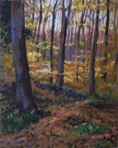 Dusk in the Beech Forest, Oil by Judy Zatsick (March 2012)