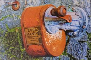Ever Handy, Photograph by Norma Woodward (July 2012)