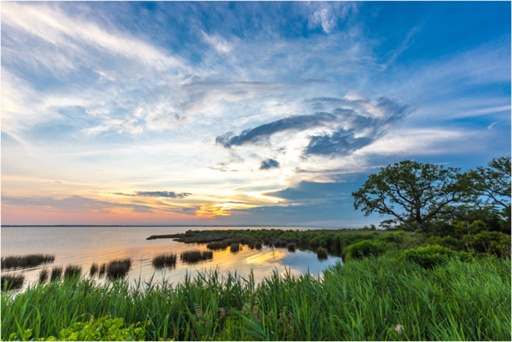 HONORABLE MENTION: Sunset in Duck, NC, Photo on Canvas by Thomas Hennessy, Size 20in x 30in (July 2017)