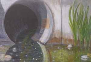 What's in There, Oil Pastel by Guerin Wolf (June 2012)