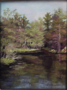 Black Pond, Pastel by Kathleen Willingham, Size 12in x 9in, $375 (August 2017)