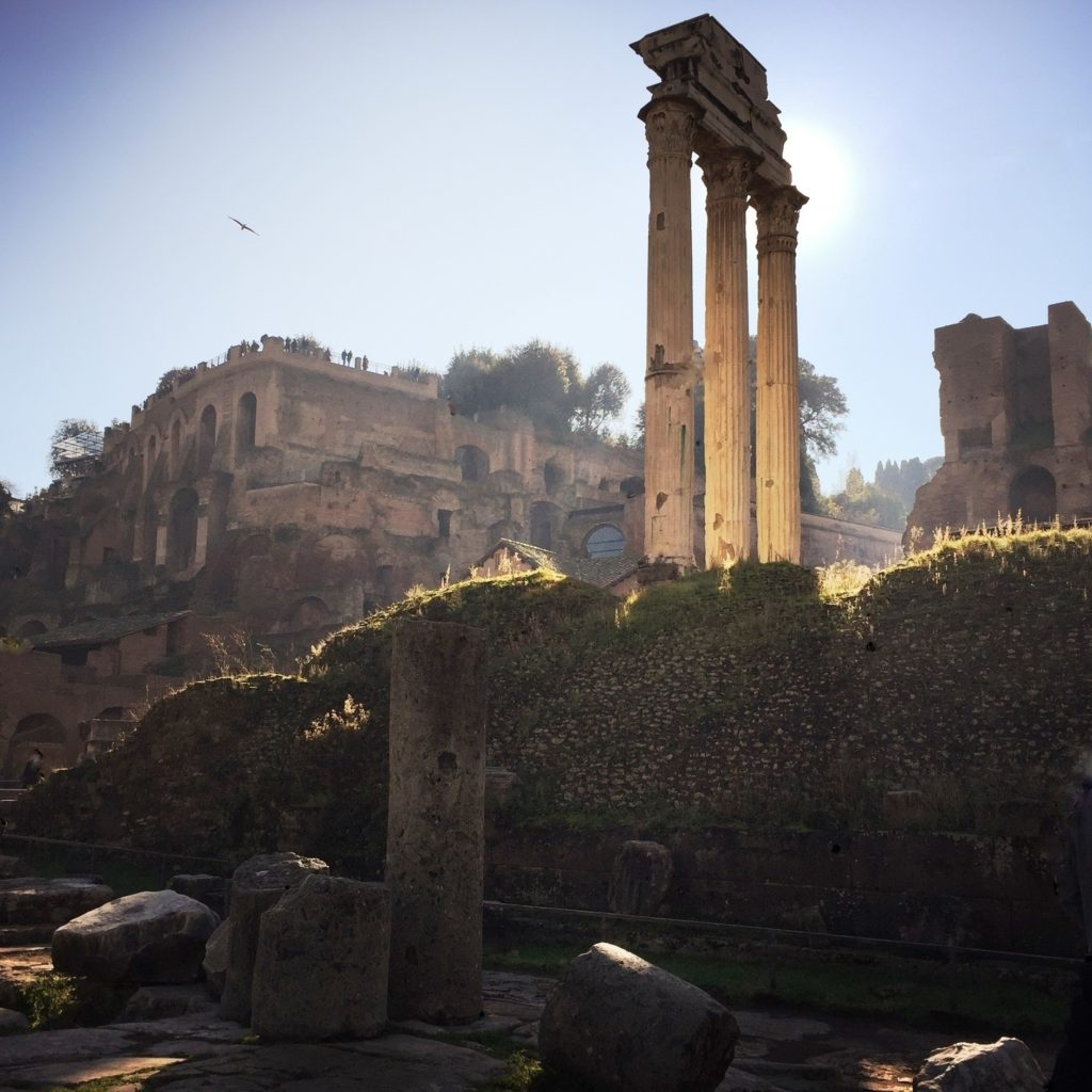 Roman Forum, photograph by Susan Raines, 11x11, $250 (October 2017)