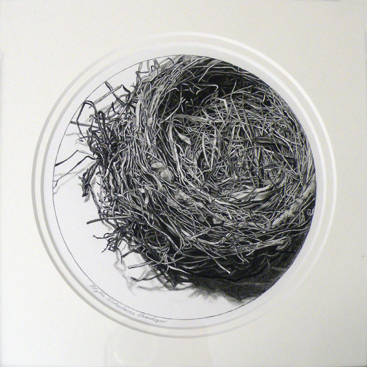 SECOND PLACE: The Empty Nest, Charcoal by Phyllis Graudszus (December 2012)