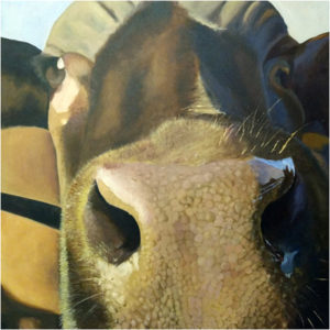 In Your Face, Oil on Canvas by Kim Richards, 36in x 36in, $2800 (March 2018)