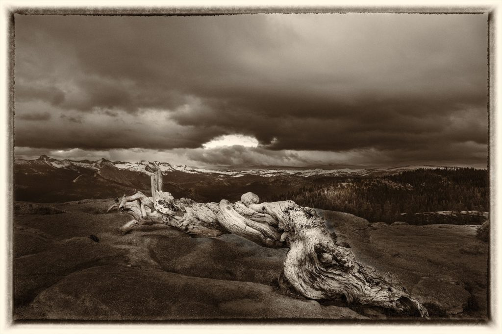 On Sentinel Dome by David Boyd (CBTC: Jan.-June, 2018)