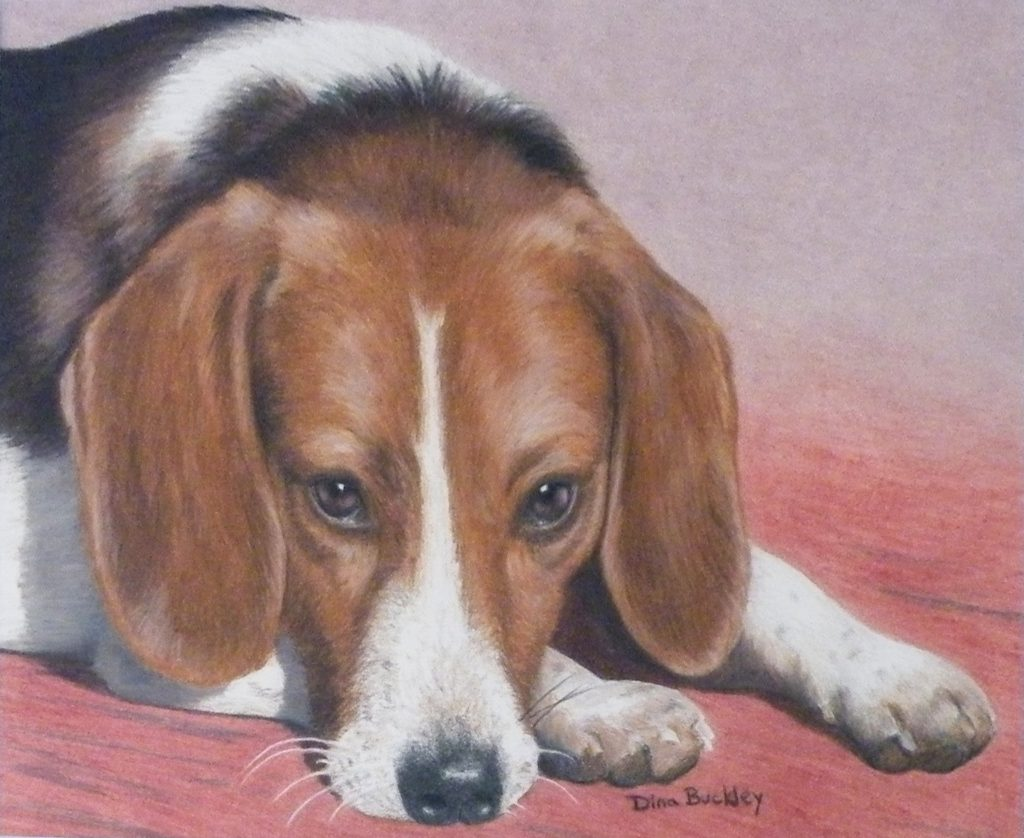 THIRD PLACE: Bolt Being Good, Colored Pencils by Dina Buckley, 9in x 11in (April 2013)
