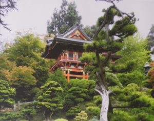 Japanese Garden, Photograph by Sharon Jones, 11in x 14in (August 2013)