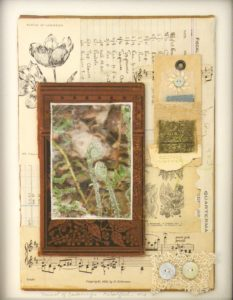 Manual of Gardening, Mixed-Book Parts by Elizabeth Woodford, 14x11 (February 2013)