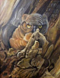 Whooo's Looking at You, Oil by Barbara Perry, 18in x 14in (June 2013)