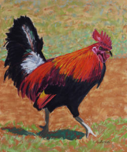 Kauai Rooster #2, work by Carol Cullinan, 13x19 (October 2018)