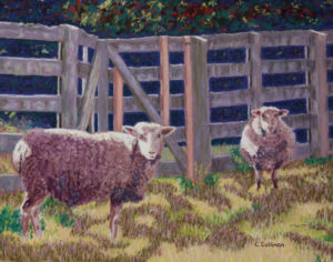 Sheep in Dappled Shade, work by Carol Cullinan, 11x14 (October 2018)