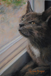 Birdwatching Cat, Pastel by Lorraine Momper, 12in x 8in, $400 (October 2018)