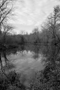 Cloudy Pond, Photograph by Lee Cochrane, 12in x 8in, $110 (April 2019)