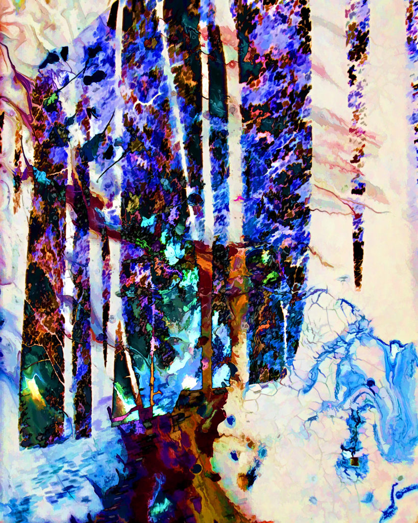 HONORABLE MENTION: Wintery Walk, Digital Creation on Canvas by Carolyn R. Beever, 20in x 16in, $150 (April 2019)