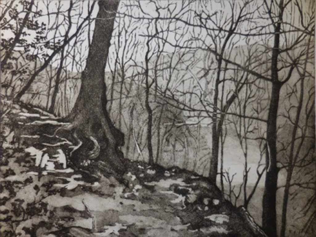 HONORABLE MENTION: Above Rock Creek Park, Etching - Aquatint by David Brosch, 18in x 24in, $450 (May 2019)