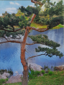 Lonesome Pine by Deborah Herndon (CBTC October 2019)