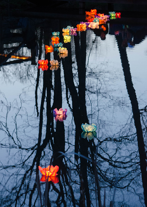 Gracie's Gowns Lanterns by Dawn Whitmore (MG: September 2015)