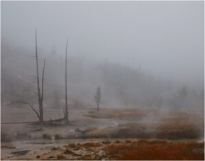 Fog and Steam, Photography by Lee Cochrane, 11in x 14in, $150 (November 2019)