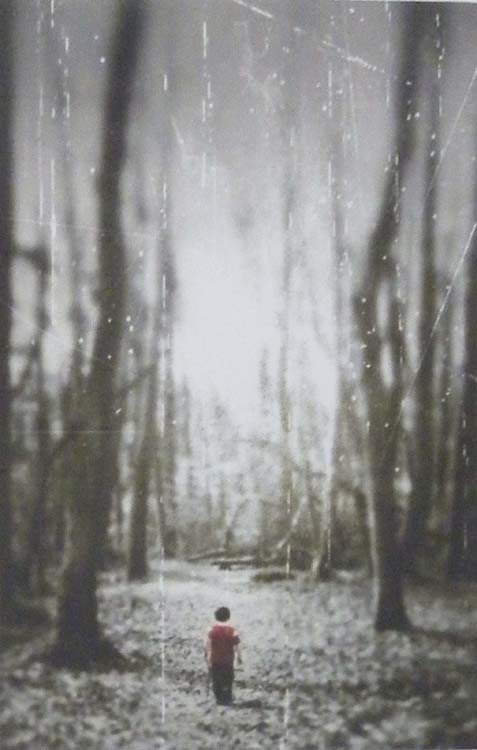 HONORABLE MENTION: Into the Woods, Digital Photography by Katherine McAskill (Dec. 2013-Jan. 2014)