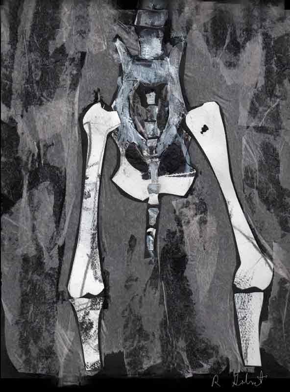 Pelvis by Ruth Golmant (MG: June 2015)