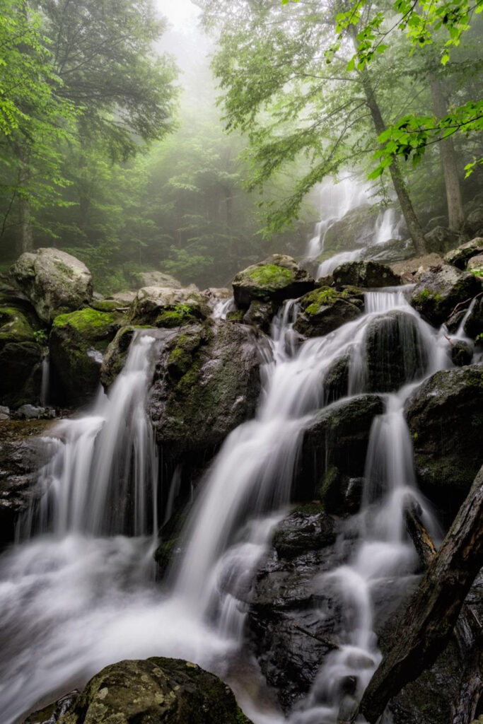 SECOND PLACE: Dark Hollow Falls, Photography by C. Renee Martin, 24in x 16in, $300 (February 2020)
